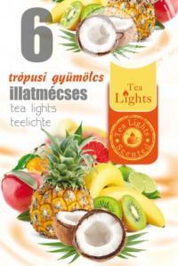 Pastile parfumate aroma de fructe TL 6 - FRUCTE EXOTICE