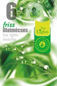 Pastile parfumate diverse arome TL 6 - friss